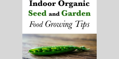 Indoor organic seed and garden food growing tips.