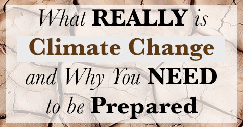 What REALLY is Climate Change and Why You NEED to be Prepared