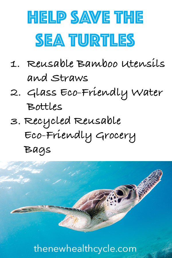 Help Save the Sea Turtles