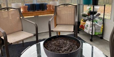Enclosed Patio Garden Design