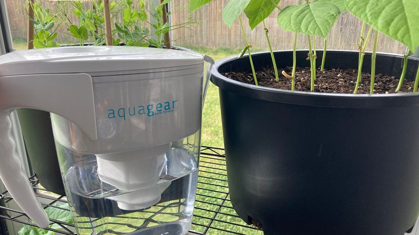 Best water filter for container gardens