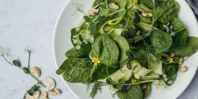 Healthy greens to start growing early spring